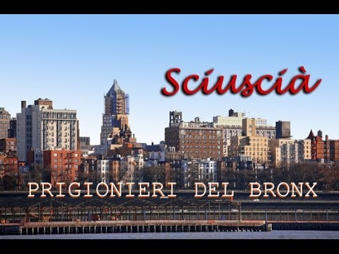 """""""Bronx New York"""" dal programma di Michele Santoro - INDIGO"""