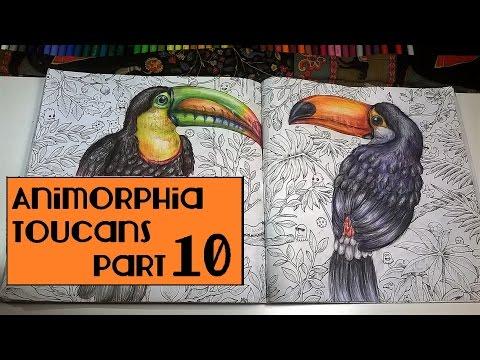 Animorphia Toucans pt 10