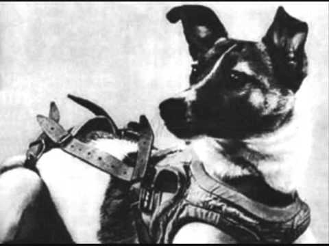 Laika 1957 (in sicilianu)