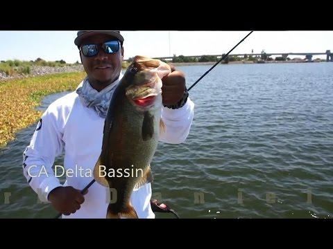 Bass Fishing the CA Delta Ft. Mark Daniels Jr.