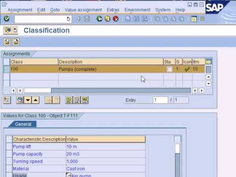 SAP Production Planning & Manufacturing; Introduction to SAP PP, SAP Production Planning & Control
