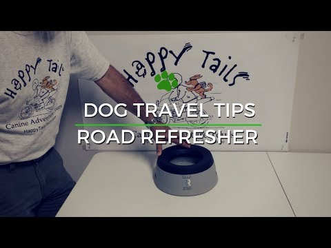 Dog Travel Tips - Road Refresher Demo