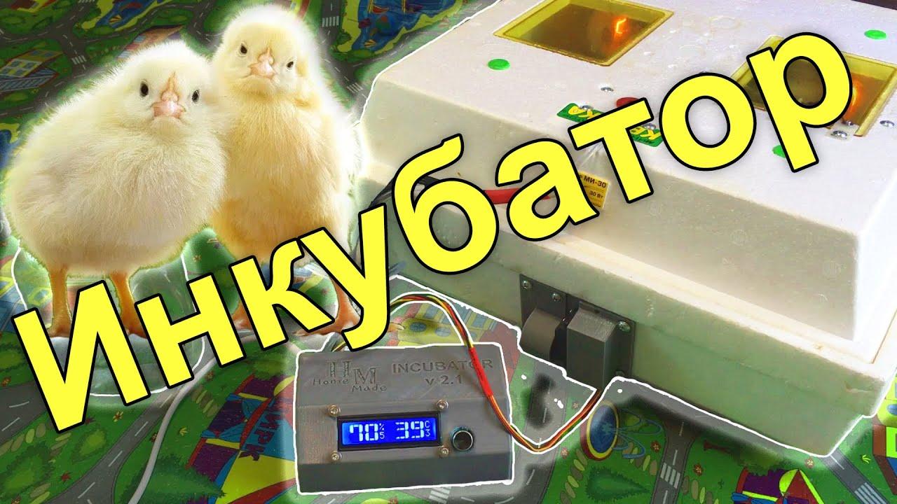 Автоматический инкубатор с переворотом яиц и проветриванием! PCBWAY.COM
