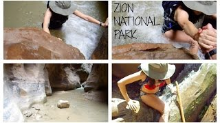 ZION NATIONAL PARK NARROWS & ORDERVILLE CANYON HIKE | Katie Carney