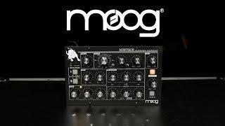 Moog MINITAUR Analog Bass Synthesizer   Gear4music demo