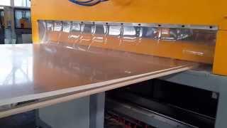 Parkistan customer---pvc wood furniture board making machine