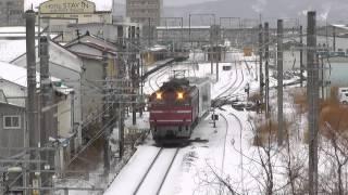 EF81・EF510貨物 羽越本線 鶴岡付近 2014.03.08