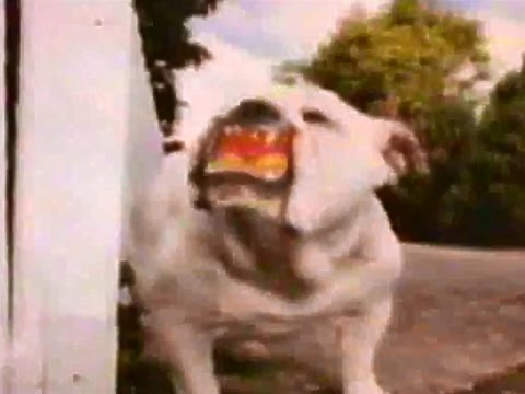 Lucky Dog Dog Food TV Commercial HD