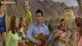 Elvis Presley - Night Rider (Extended Video Dub)