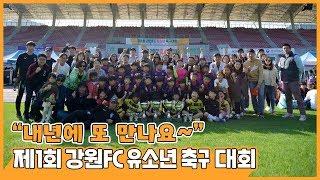 2019 제1회 강원FC 유소년 축구 대회