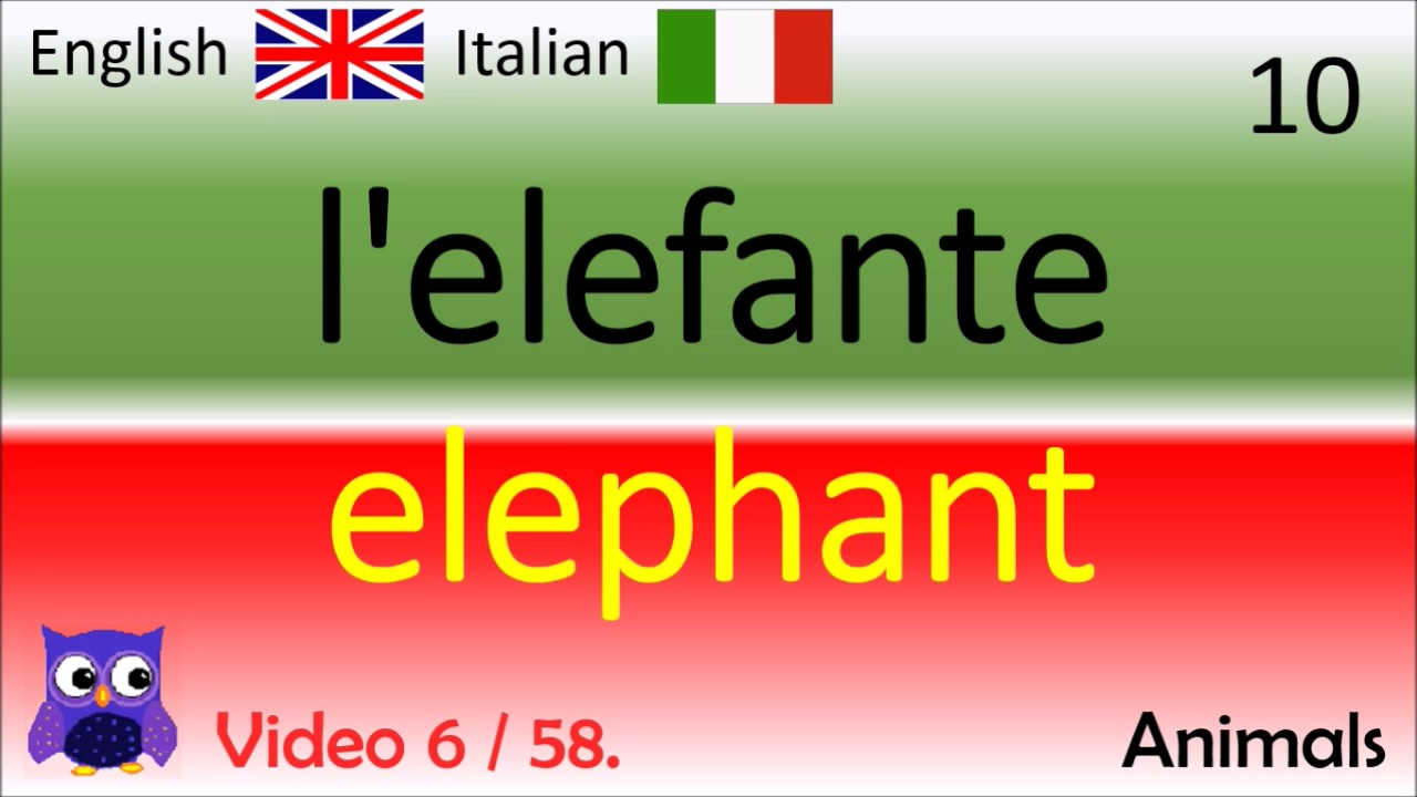 Italian English Animsld: Parole Inglesi / Italian