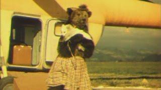 Мишель и Мишутка 1961 0 33, Актеры-цирковые медведи
