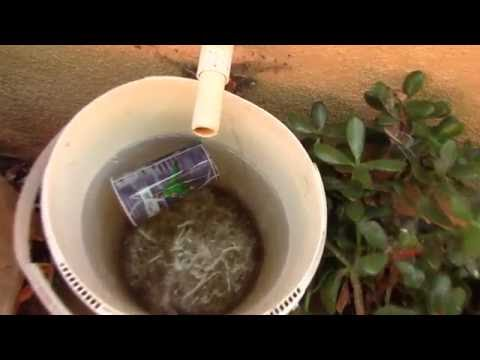 Water your plants with the water from a air conditioner - Bigfoot Prepper