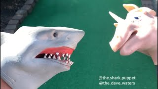 SHARK PUPPET PLAYS MINIGOLF
