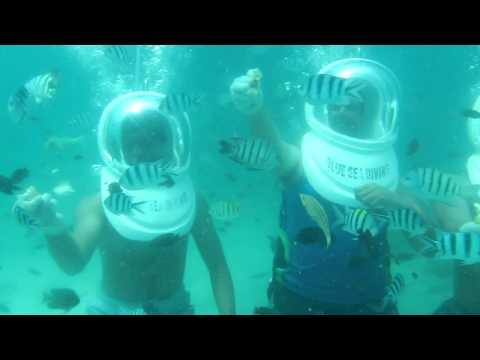 Underwater Sea Walk, Coral Island, Pattaya, Thailand