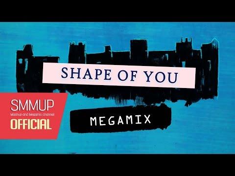 Shape of You (megamix) | Sia, Zarra larsson, Ariana Grande, and more: