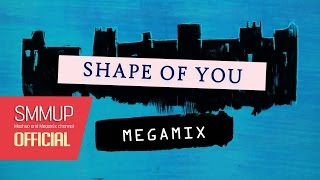 Shape of You (megamix) | Sia, Zarra larsson, Ariana Grande, and more: