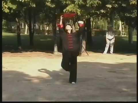 Taiji Kung Fu Fan - Xiyanmei