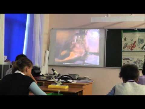 Мастер-класс Современный урок истории (видео)