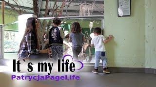 AUSFLUG TIME - It's my life #861   PatrycjaPageLife