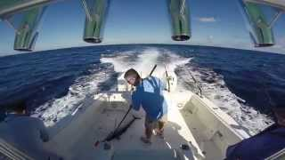 Bimini Wahoo Smackdown   Youtube