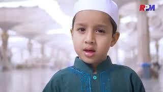 """Muhammad Hadi Assegaf-""""Lirik Lau kana Bainanal Habib"""