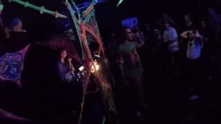 Der traurige Gärtner - Ananas Live