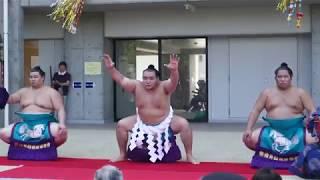 平成30年8月13日、仙台市若林区の荒井東公営住宅で、大相撲の復興横綱土...