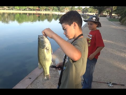 Bass Fishing: Pond Loaded With Bass Helps These Kids Practice Their Skills, 26 Largemouth Bass