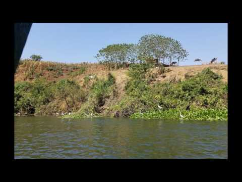 The Source of the Nile      Jinja Uganda   Photos of Flora
