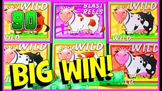 7 SPINS MEANS 'BIG WINS'!! ★ PLUS A PREVIEW OF MY MOOLAH MEGA-JACKPOT ★ #UNICOW ★ BrentSlots