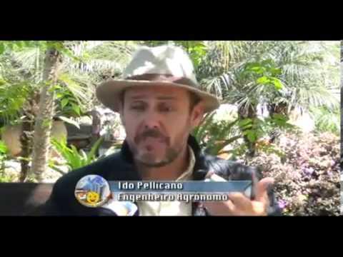 Viviana Lira REDE TV Brasília Programa Condomínio Legal e Cia Programa 3 Condomínio Legal.mp4