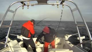 Stern Saver Monterey Bay Salmon Fishing 4/15/2012
