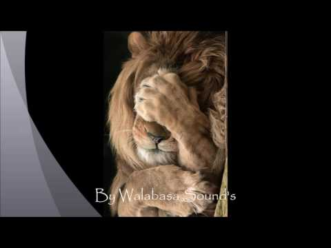 Dj zabbah & Dj roh walabasaba sound's