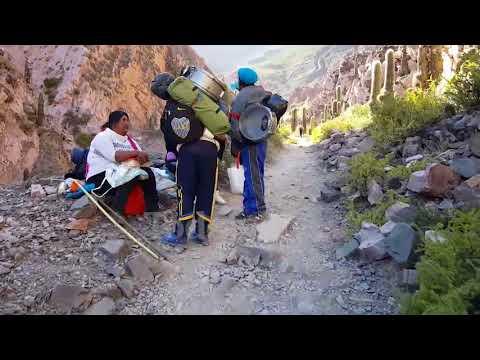 Más de 45 mil peregrinos ascendieron hacia el Abra de Punta Corral