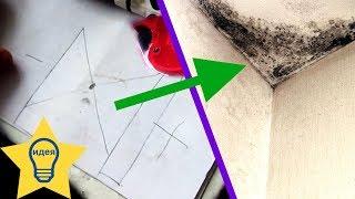видео Стены  в панельном  доме