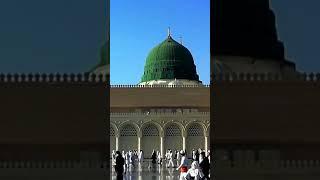 New Islamic WhatsApp status 2021/ Islamic Status Naat Sharif Islamic WhatsApp naat 2021| Naat status screenshot 4