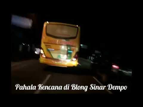 Saling Senggol sesama Bus Sumatera Pahala Kencana vs Sinar Dempo vs FRC, over Take broo