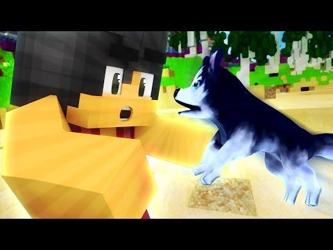 Beach Puppy  | Love~Love Paradise MyStreet [S2:Ep.2 Minecraft Roleplay]