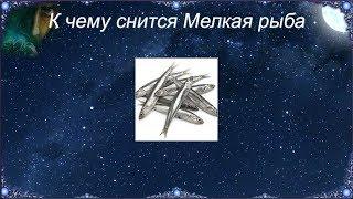 К чему снится Мелкая рыба (Сонник)