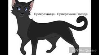 Звездные имена котов-воителей.