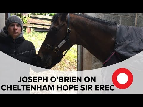 Joseph O'Brien on Cheltenham Festival hope Sir Erec