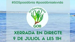 SOS posidònia, per una mar amb vida
