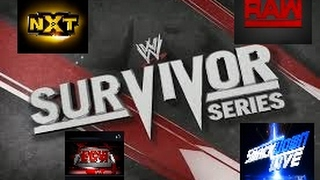 18.2.17 PPV Survivor Series Episode 34 Hauptkampf Team Raw vs Team Nxt