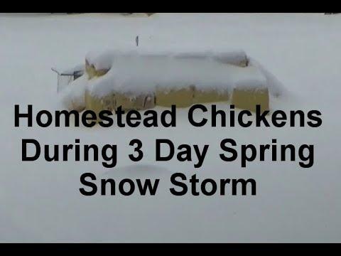 April 13~15 Homestead Under Non Stop Snow