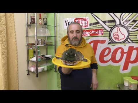 Щучья голова с чесноком, Иван Васильевич меняет профессию