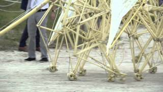 Strandbeest: The Dream Machines of Theo Jansen