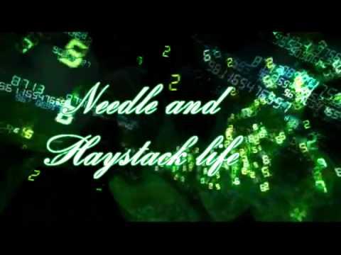 Needle and haystack life lyrics