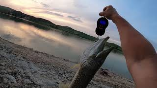 Апрельская рыбалка на водохранилище в Испании
