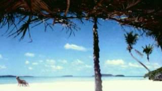 You Look Wonderful Tonight (Tongan Version)